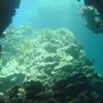 Океанография