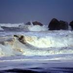 Опубликован обзор ЕСИМО о текущей обстановке в океанах и морях