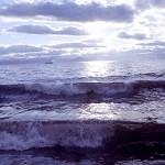 Землетрясение в Тихом океане